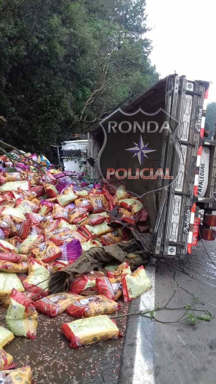 Caminhão carregado de ração tomba na BR-282