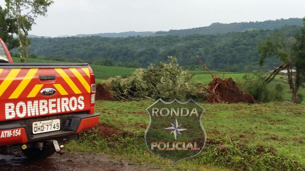 Temporal provoca destelhamento de casas e arranca árvores