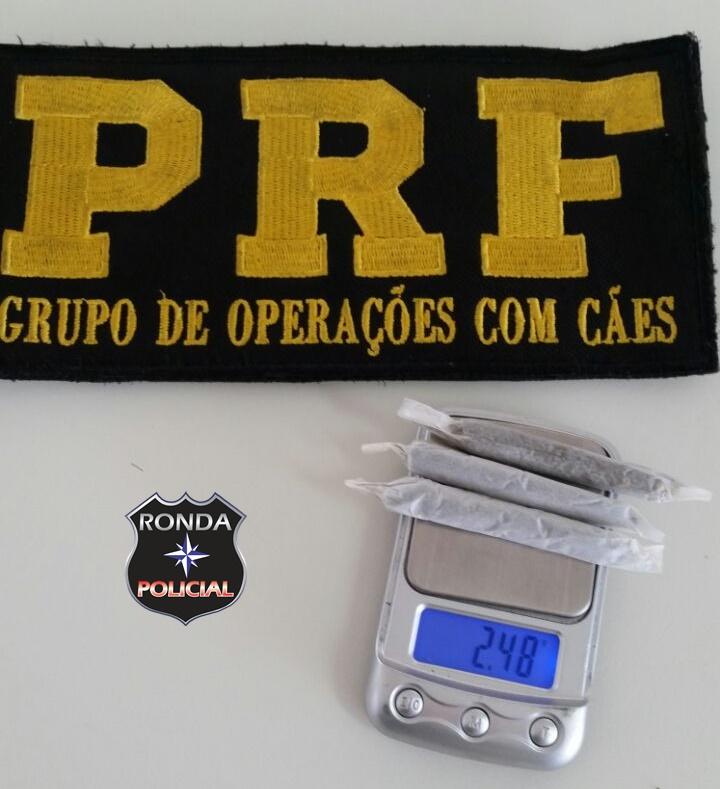 PRF apreende maconha com motorista gaúcho