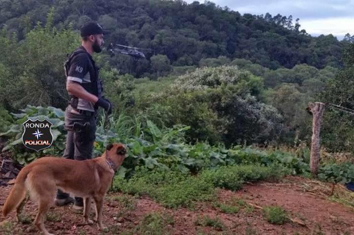 Três pessoas são presas em grande operação da Polícia Civil