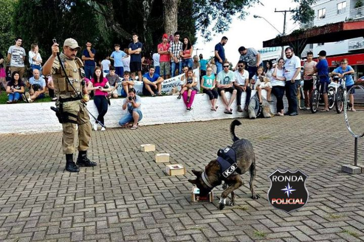Canil da PM de Xanxerê realiza apresentação social em São Lourenço do Oeste