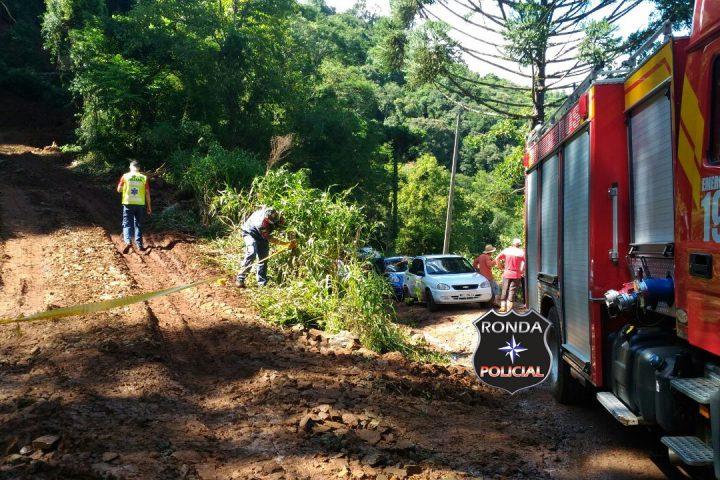 Agricultor morre ao ser atingido por árvore em comunidade rural