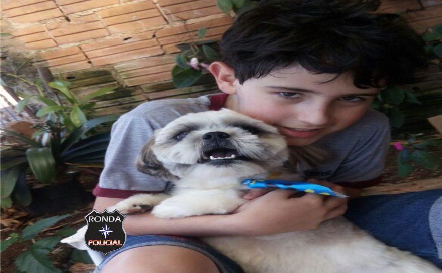 Menino que teve sua cachorra morta em atropelamento recebe novo cachorro de doação após caso ser divulgado pelo Ronda Policial