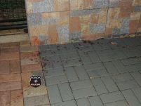 Jovem é assassinada pelo ex-marido no centro de Xanxerê