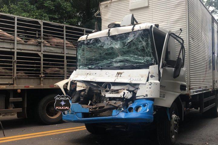 Duas pessoas ficam feridas em colisão entre dois caminhões na 282