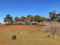 Família é agredida durante assalto a mão armada em comunidade rural
