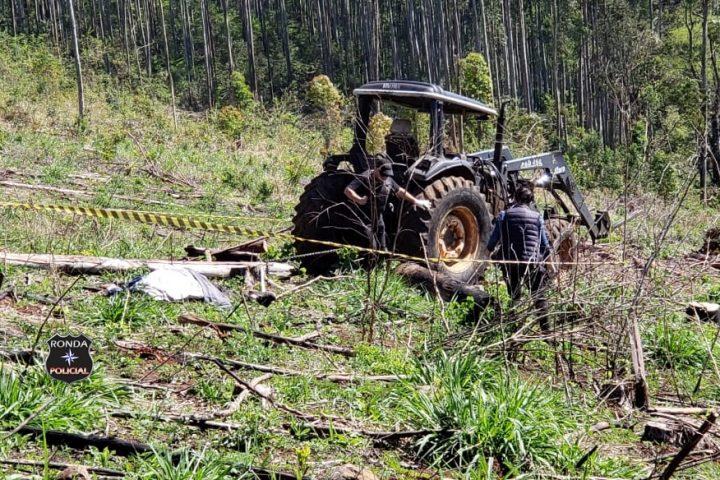 Idoso morre ao ser atingido por tora de eucalipto em comunidade rural