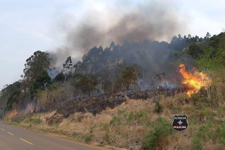 Bombeiros combatem incêndio em vegetação
