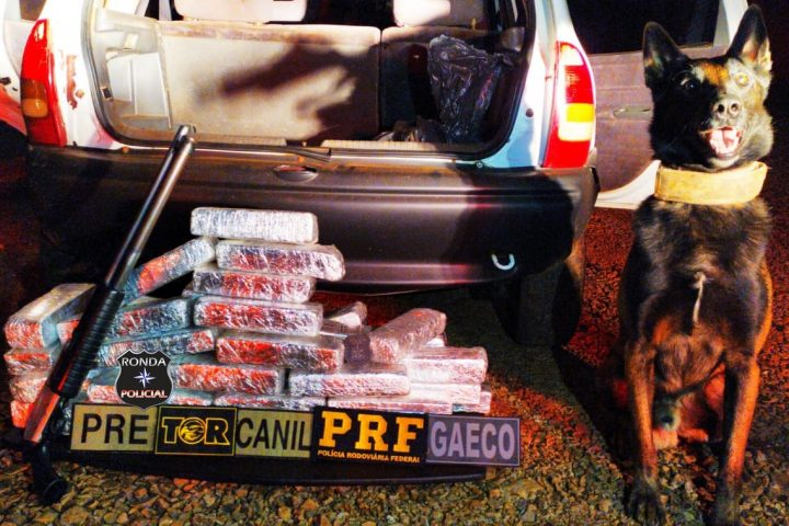 Ação policial prende quatro homens e 40 quilos de maconha