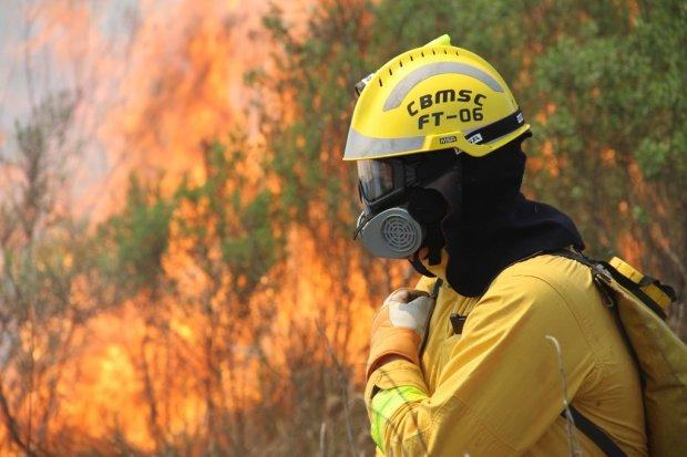 Em maio, Santa Catarina registra maior número de incêndios florestais em quatro anos