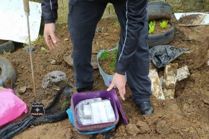 Polícia Civil encontra 4,5 kg de maconha em quintal