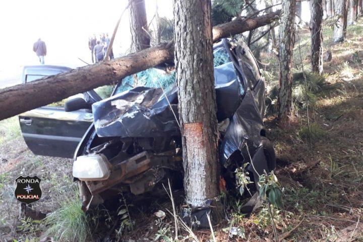 Cinco pessoas ficam feridas após carro sair da pista e colidir em árvore