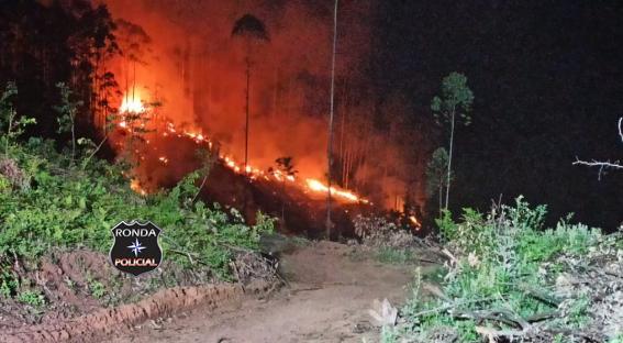 Incêndio florestal mobiliza Corpo de Bombeiros