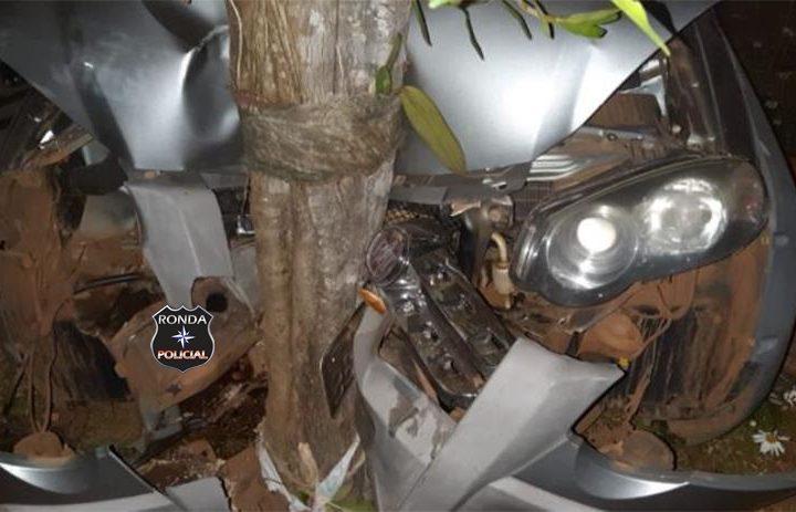 Motorista fica ferido após desviar de cachorro e bater em árvore