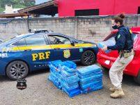 PRF apreende carregamento de 200 kg de maconha na BR-282