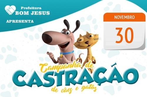 Secretaria de saúde promove ação para castração gratuita de cães e gatos em Bom Jesus
